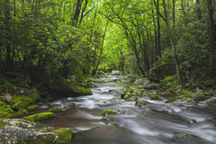 Roaring Fork Creek in the Great Smoky Mountains USA Stock Photography