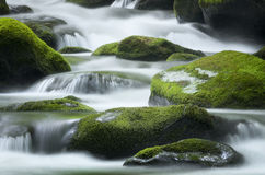 Roaring Fork Creek, Smoky Mountains National Park Royalty Free Stock Images