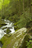 Roaring Fork, Great Smoky Mtns NP. Roaring Fork, Great Smoky Mountains National Park, TN, USA stock image