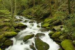 Roaring Fork, Great Smoky Mtns NP, TN. Roaring Fork, Great Smoky Mountains National Park, TN, USA stock photography