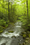 Roaring Fork, Great Smoky Mtns NP, TN Royalty Free Stock Photo