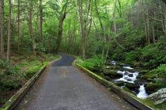 Roaring Fork Motor Nature Trail. Great Smokey Mountains National Park Stock Photos