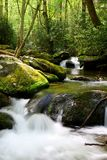 Roaring Fork Motor Trail Waters In the Smoky Mountains Stock Photo