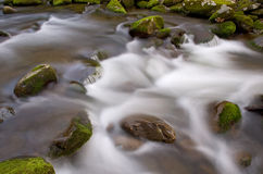 Roaring Fork Rapids Stock Photo