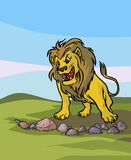 Roaring Lion. Stock Images