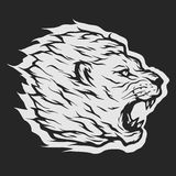 Roaring lion head. Royalty Free Stock Photography