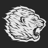 Roaring lion head. Roaring lion head Dark background Royalty Free Stock Photography