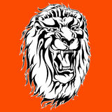 Roaring lion tattoo Stock Images