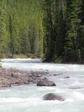 Roaring River. A roaring whitecapped river leading up to Sunwapta Falls near Jasper, Alberta, Canada Stock Photo