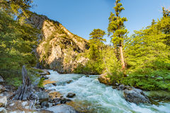 Roaring River Falls, Kings Canyon National Park Stock Images