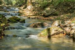 Roaring Run Creek, Jefferson National Forest, USA. A view of Roaring Run Creek is located in Roaring Run Recreational Area in the Jefferson National Forest stock photos