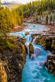 The roaring Sunwapata Falls in Jasper. National Park, Alberta, Canada with deep blue water Stock Image