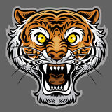 Roaring tiger in classic tattoo style Stock Image
