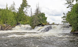 Roaring Waters in the Wilderness Stock Photography