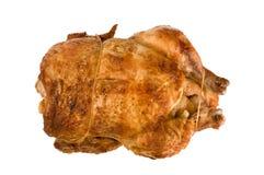roast κοτόπουλου Στοκ Εικόνα