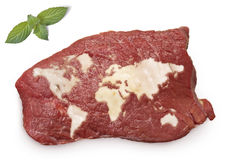 Roast beef meat and fat shaped as the world.(series) Stock Photo