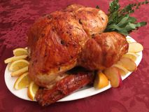 Roast Brown Thanksgiving Turkey Royalty Free Stock Photography