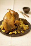 Roast capon with morels and pan-fried gnocchis Stock Photos