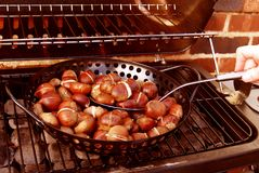 Free Roast Chestnuts Royalty Free Stock Photos - 1424578