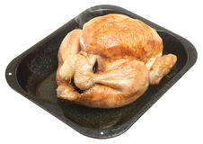 Roast Chicken. Roasted chicken straight out of the oven with steam rising Royalty Free Stock Images