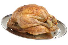 Roast Chicken. Freshly roasted chicken on a stainless steel meat tray Stock Image