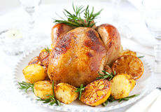 Roast chicken. With potatoes,lemons and rosemary Royalty Free Stock Image