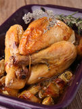 Roast chicken. Gourmet plate of roast chicken Stock Photos
