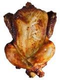 Roast Chicken. A roast chicken isolated on white stock photo