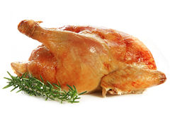 Roast Chicken. Isolated on white, with fresh rosemary sprigs stock photos
