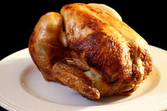 Roast chicken B Stock Image
