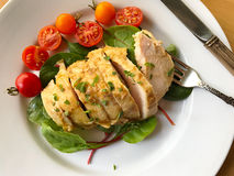 Roast chicken breast with greens and tomatoes Royalty Free Stock Photo