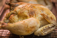 Roast Chicken on a cooling rack Royalty Free Stock Photo