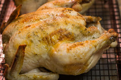 Roast Chicken on a cooling rack Royalty Free Stock Image