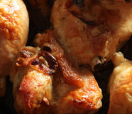 Roast chicken drumsticks on a baking pan Stock Photography