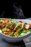 Roast chicken and fresh vegetables as a healthy salad Stock Image