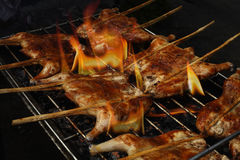 Roast chicken on the grill Royalty Free Stock Photos
