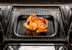 Roast chicken in the oven. Royalty Free Stock Image
