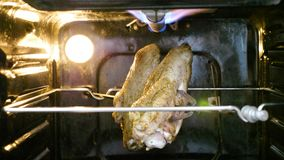 Roast chicken in the oven stock video