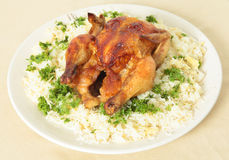 Roast chicken and rice high angle Stock Image