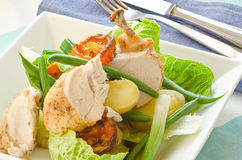 Roast chicken salad Royalty Free Stock Images