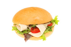 Roast chicken and salad bread roll Stock Image