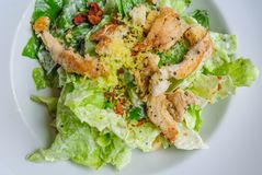 Roast chicken salad in white plate Royalty Free Stock Photos