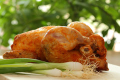 Roast chicken. With spring onion on desk Royalty Free Stock Image