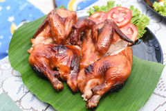 Roast chicken. A Roast chicken on the table Stock Photography