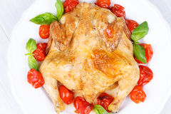 Roast chicken with tomatoes cherry, green basil and garlic. Royalty Free Stock Images
