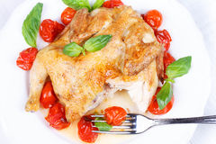 Roast chicken with tomatoes cherry, green basil and garlic. Stock Photos