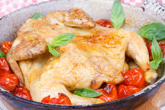 Roast chicken with tomatoes cherry, green basil and garlic. Royalty Free Stock Photo