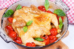 Roast chicken with tomatoes cherry, green basil and garlic. Royalty Free Stock Photography