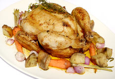 Roast chicken with vegetable Stock Photography