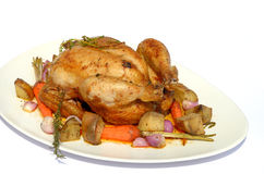 Roast chicken with vegetable Royalty Free Stock Photos